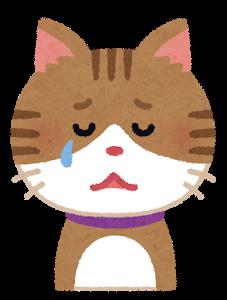 涙を流す猫のイラスト