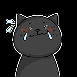 涙を流す黒猫